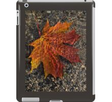 Colors and Patterns  iPad Case/Skin