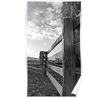 Along the fenceline Poster