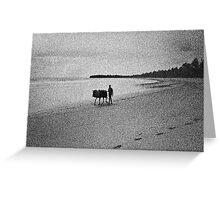 Morere Beach - Bahia - Brazil  Greeting Card