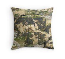 Seaweed on Rocks Throw Pillow