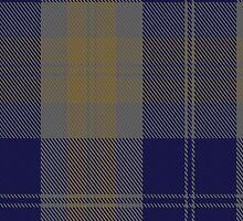 00399 Bannock Brown #2 Tartan  by Detnecs2013