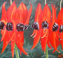 Sturt Desert Peas by Wendy Sinclair