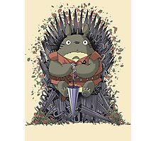 The Umbrella Throne Photographic Print