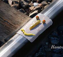 Hamtrak by JpPhotos