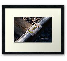Hamtrak Framed Print