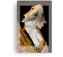 Reptile breaking out Canvas Print