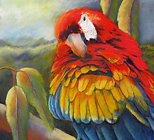 Fluffing a plumb  (Macaw) by sandysartstudio