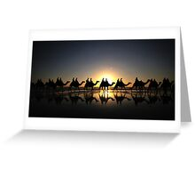 Camels at Sunset Greeting Card