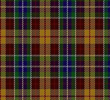 00373 Isle of Arran #3 Tartan  by Detnecs2013