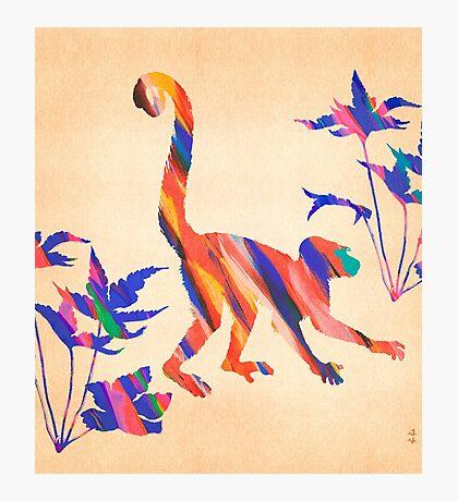 Exotic Monkey Paintbrush Rainbow Collage Photographic Print