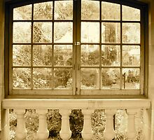 Garden Window by ys-eye
