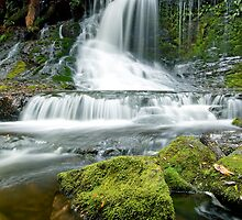 Horseshoe Falls by Travis Easton