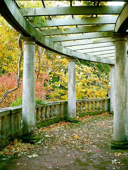 Arbor Promenade  by ys-eye