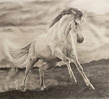 Wild galloping horse by RmvPortraitsArt