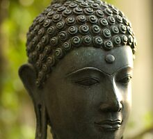Stillness by Limitlessonline