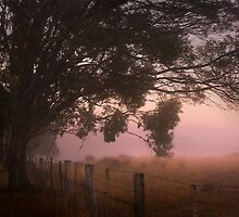 Fence line by athex