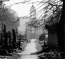 Brompton Cemetery by Ross Robinson