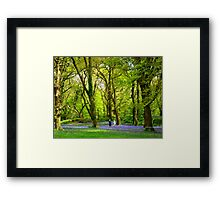 Never Too Old - to Play Amongst Bluebells Framed Print