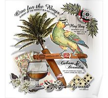 parrot in a hat Poster