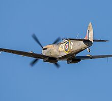 BBMF Spitfire TE311 by Lee Wilson