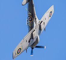 Supermarine Spitfire TE311   by Lee Wilson