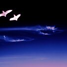 Silent  flight by Neophytos