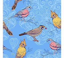 pattern with birds and mandala background Photographic Print