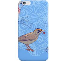 pattern with birds and mandala background iPhone Case/Skin