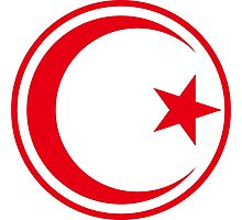 Tunisian Air Force - Roundel Photographic Print