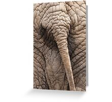 the elephant tail in the jungle Greeting Card