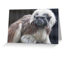 gibbon in the jungle Greeting Card