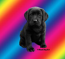 Rainbow Black Labrador Retriever Puppy by BlackDogArtJudy