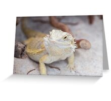 iguana in the jungla Greeting Card