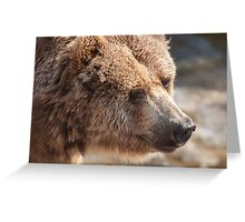 bear in the forest Greeting Card