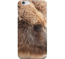 bear in the forest iPhone Case/Skin
