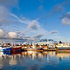 Killybegs Harbour by David Clarke