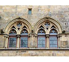 Twin windows at Cordes-sur-Ciel Photographic Print