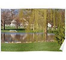 Weeping Willow Pond Reflections Poster