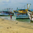 Fishing fleet, India by indiafrank