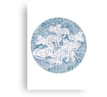 White and blue tigers Canvas Print