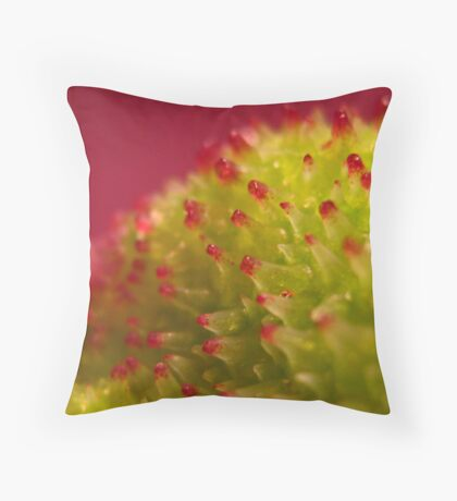 Canna on Red Throw Pillow