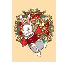 A Bunny's Tale Photographic Print