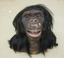 WowWee Alive Chimpanzee by anibubble