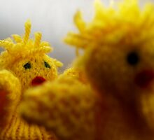 Easter chikens by Arve Bettum