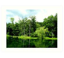 Green Reflections Art Print
