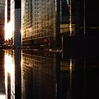 Wonder City by hologram