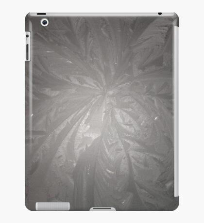 Unusual Ice iPad Case/Skin