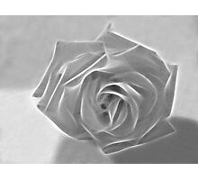 Essence of a Rose 3 Photographic Print