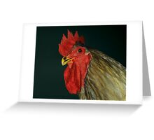 Blue Jersey Giant Cock Greeting Card