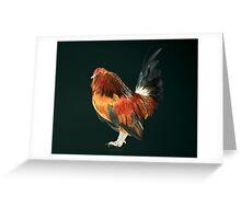 Belgian d'Anver Quail Cock Greeting Card